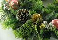 Free Green Christmas Garland Royalty Free Stock Image - 17532676