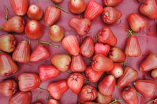 Free Rose Apple Stock Images - 17530464
