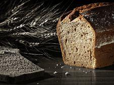 Free Bread Royalty Free Stock Photo - 17530625