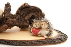 Root With Hedgehog Pair Royalty Free Stock Photography