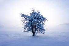 Free Winter Landscape Stock Image - 17533111