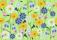 Free Meadow Flowers Royalty Free Stock Photo - 17534075