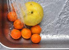 Free Oranges_012 Stock Photo - 17534510