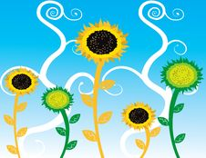 Free Abstract Sunflowers  Illustration Summer Royalty Free Stock Images - 17535239