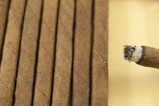Free Cigars Stock Photo - 17535280