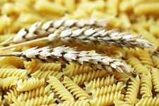 Free Pasta Stock Photography - 17535502
