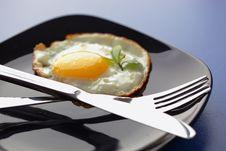 Free Scrambled Eggs Stock Photos - 17536213