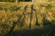 Free Hikers Shadow On Grass Stock Image - 17537071