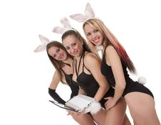 Free Bunny Playgirls Stock Images - 17537564