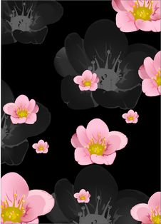 Free Background With Pink Flowers Stock Photo - 17538720