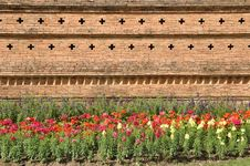 Free Brown Brick Wall.Flower Garden Stock Image - 17538821