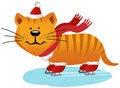 Free Cat Racing Skates Stock Photo - 17544530