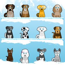 Cute Dogs Royalty Free Stock Images