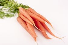 Free Beam Carrots Stock Photo - 17540440