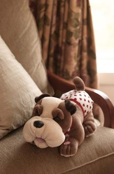 Free Stuffed Dog Toy Royalty Free Stock Photos - 17541608