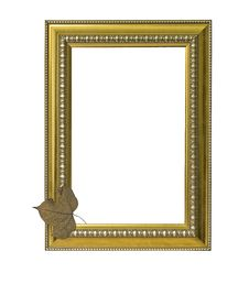 Free Gold Classic Frame With Dry Leaf Stock Photography - 17541952
