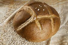 Free Bread Royalty Free Stock Photos - 17543208