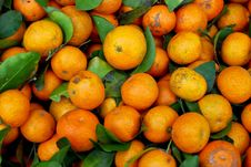 Free Fresh Baby Orange In Market Royalty Free Stock Photography - 17543507