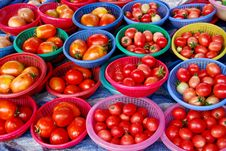 Free Fresh Tomato In Market Stock Photos - 17543593