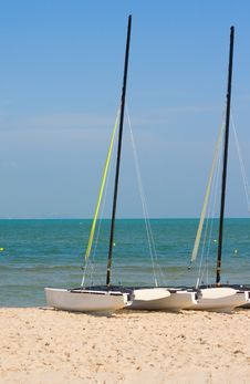 Free Catamaran Royalty Free Stock Photography - 17544567