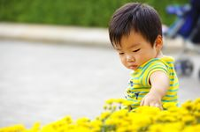 Free A Baby Is Playing In Garden Royalty Free Stock Image - 17544986