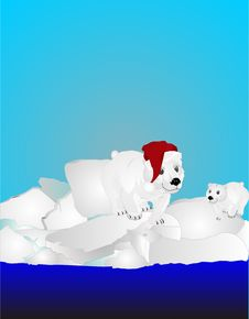 Free Two Polar Bears On Ice Pack Stock Image - 17545531