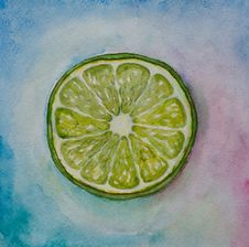 Free Lime Watercolor Royalty Free Stock Photography - 17546717