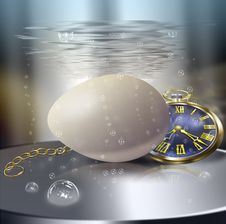 Breakfast Bachelor. Soft-boiled Egg. Royalty Free Stock Images