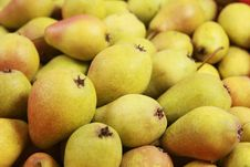 Free Pears Stock Image - 17549871