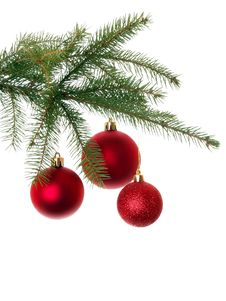 Free Red Christmas Decoration On Christmas Tree Royalty Free Stock Photos - 17551918