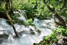 Free Falls In The Forest Royalty Free Stock Image - 17553296