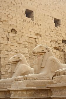 Free Ram Sphinxes At Karnak Temple Royalty Free Stock Photos - 17553368