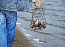 Free Fishing Royalty Free Stock Photo - 17554115