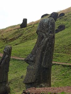 Free Moai On Easter Island Royalty Free Stock Photography - 17554257