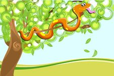 Free Snake On Tree Royalty Free Stock Photos - 17558308
