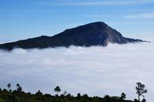 Free Fog At Doi Hua-sua Royalty Free Stock Photos - 17558488