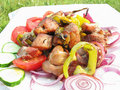 Free Grilled Meat With Vegetables Royalty Free Stock Images - 17563339