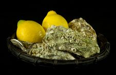 Free Oysters And Lemons Royalty Free Stock Image - 17560776