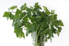 Free Parsley Stock Images - 17561264