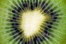 Free Slice Of Kiwi Stock Images - 17562004