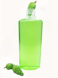 Free Shower Gel Bottle With Fir Extract Royalty Free Stock Photo - 17563185