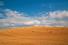 Free Hay Bales In Tuscany Royalty Free Stock Photos - 17564208