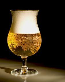Free Golden Beer Stock Image - 17566151