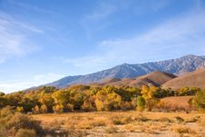 Free Fall Colors In The Eastern Sierra Stock Photography - 17570792
