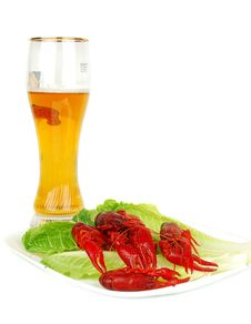 Free Crawfish And Beer Stock Photos - 17572943