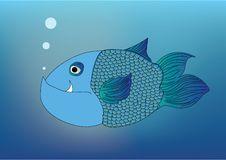 Free Blue Fish Stock Photos - 17574423