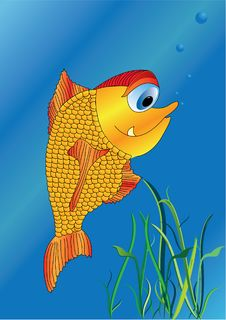 Free Gold Fish Royalty Free Stock Photography - 17574447
