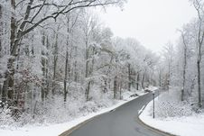 Free Winter Scenery Royalty Free Stock Photography - 17575387