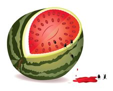 Free Seeds Escape From Water-melon Stock Photo - 17575930
