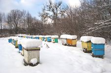 Free Apiary In Wintertime Stock Photography - 17576282
